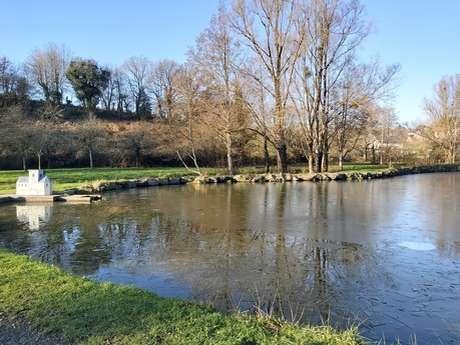 L'étang du Bulsard