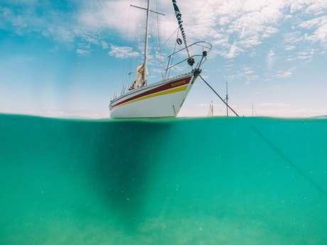 Naviguer avec gourmandise vers les îles Chausey