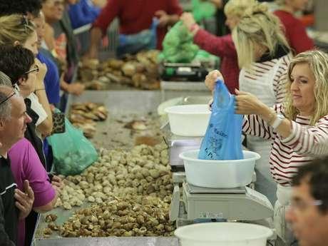 ANNULE - Festival des coquillages : Toute la Mer sur un plateau