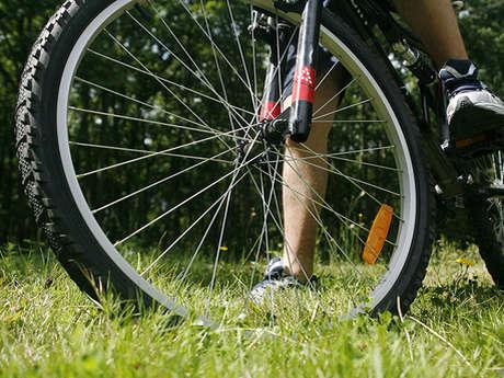 A vélo à Dorceau autour de la Véloscénie - La Route Royale