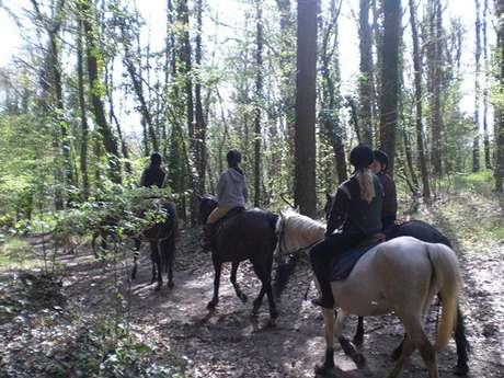 Perche Réno Equestrian Centre