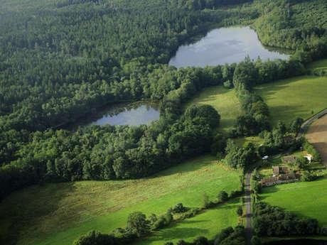 Réserve naturelle régionale de la clairière forestière de Bresolettes