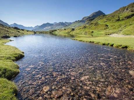 """Sortie montagne du Parc national """"Faune, flore et pastoralisme en vallée d'Ossoue"""""""