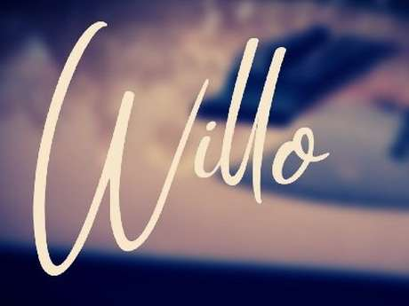 "Concert avec le groupe ""Willo"""