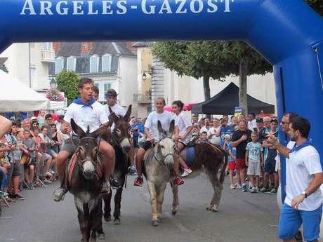 Grand Prix de la Ville : course d'ânes