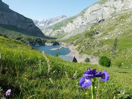 """Sortie Natura 2000 : """"À la découverte de la vallée d'Estaubé, le lac des Gloriettes et ses particularités naturelles"""""""