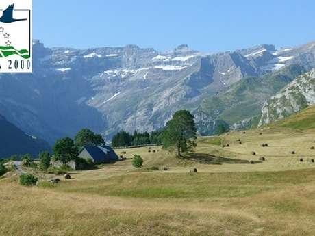 """Sortie Natura 2000 : """"À la découverte de la flore de nos montagnes sur le plateau de Saugué"""""""