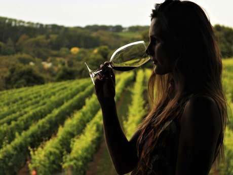 Au Monde du Vin