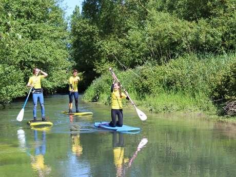 Balade verdoyante en paddle en rivière