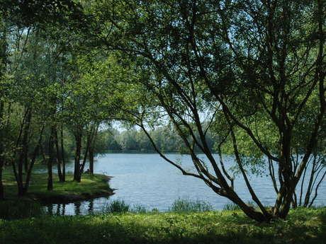 Le chemin des étangs de la Vallée de la Bresle