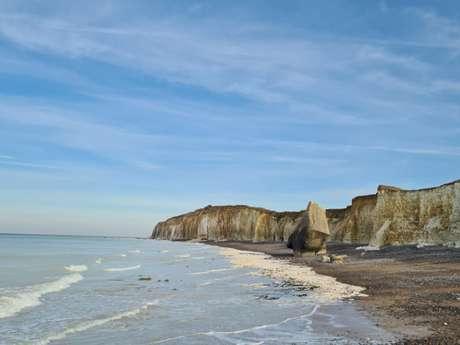 "[Balade Nature] ""Sainte-Marguerite-sur-Mer entre Terre et Mer"""