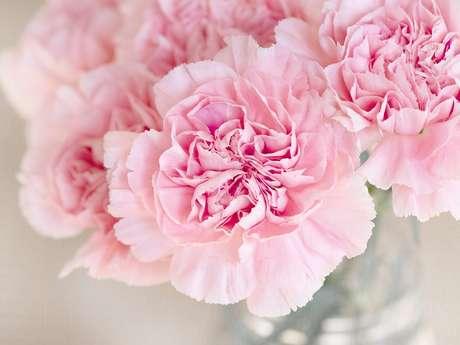Fleurs du Mesnil