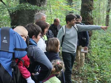 [Visite nature] Découverte ornithologique en Basse Vallée de la Scie