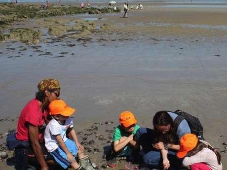 [Jardin des mers] Activités en intérieur ou extérieur pour les 4-10 ans