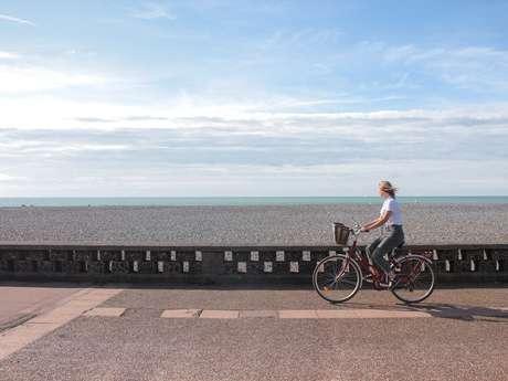 Location de vélo · Actif Véloc