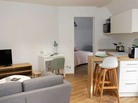 LAVAL GARE APPARTEMENT COSY