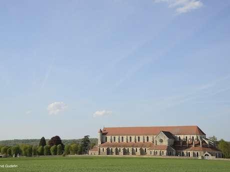 L'Abbaye de Pontigny, aux origines du Chablis - Visite et dégustation