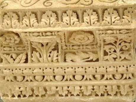 Site Archéologique d'Escolives
