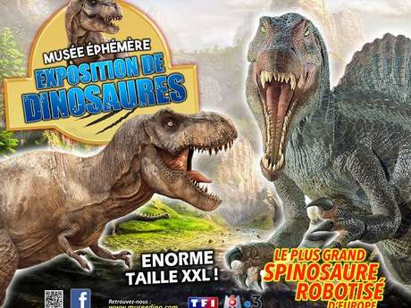 Musée éphémère - exposition de dinosaures