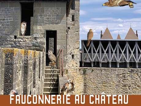 FAUCONNERIE AU CHÂTEAU