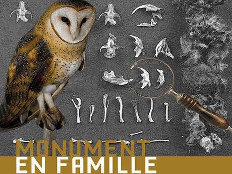 MONUMENT EN FAMILLE - RECONNAITRE LES RAPACES
