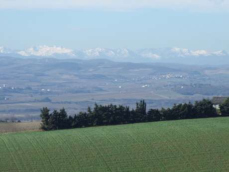 VILLARZEL-DU-RAZES-CHEMIN DU REC GRAND-9 KM