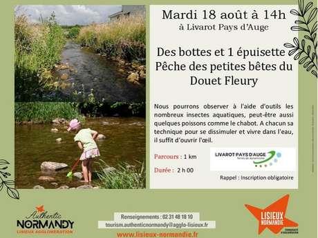 Les rendez-vous nature 2020 - Des bottes et une épuisette : pêche des petites bêtes du Douet Fleury