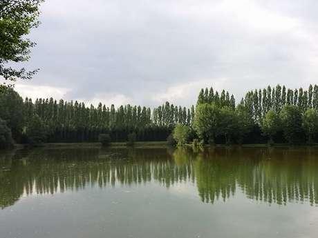 Fishing pond : Domaine de l'Orbiquet