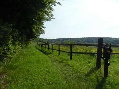 Aux portes du Pays d'Auge - Départ : Boissey