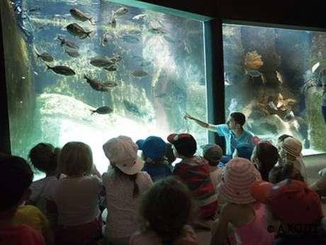 Visite guidée de l'Aquarium Marin dans le cadre de la fête de la science