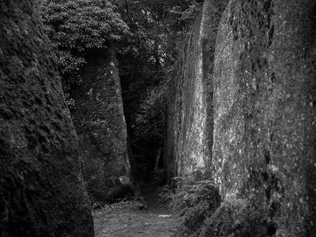 Juliette Agnel, la mémoire des roches