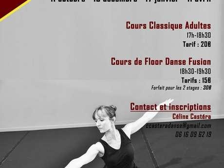 Stage de danse classique adultes & Floor Danse Fusion