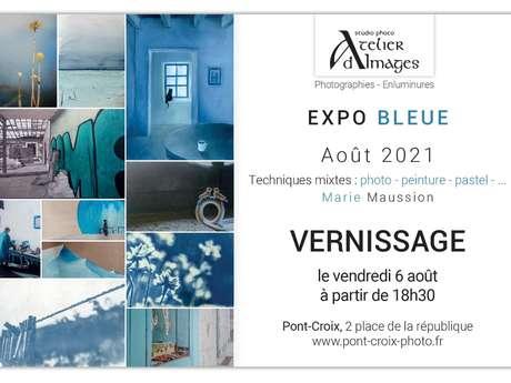 Vernissage - Exposition du mois d'août - Marie Maussion