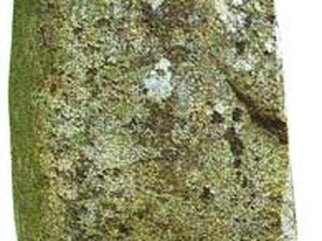 Stèle de la fécondité