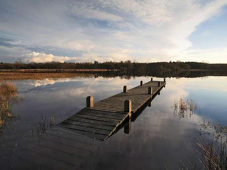 Parcours pêche de l'étang du Moulin Neuf