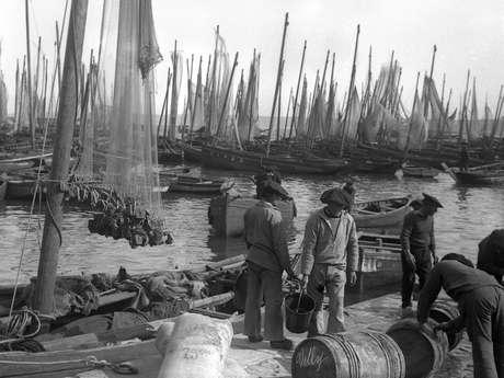 Port-musée - Des bancs de sardines aux bancs d'usines