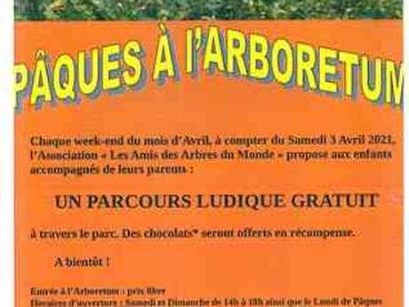 Parcours ludique à l'Arboretum (Les Arbres du Monde au Huelgoat)