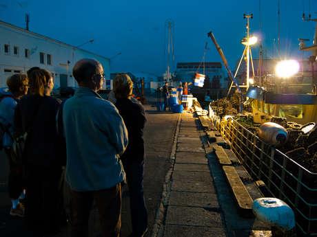Visite du port de pêche : comment fonctionne un port de pêche ?