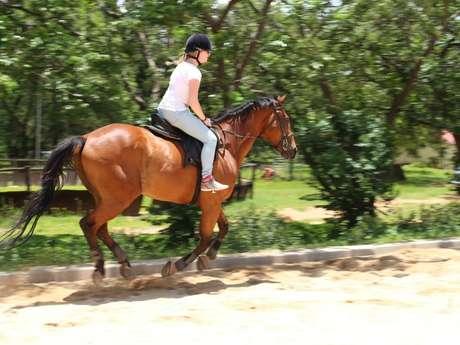 Zéphyr Equitation