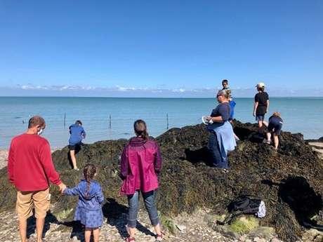 Balade autour des algues et visite de la Ferme Marine