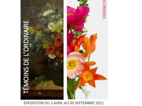 Exposition château de Vitré : Témoins de l'ordinaire, collections croisées