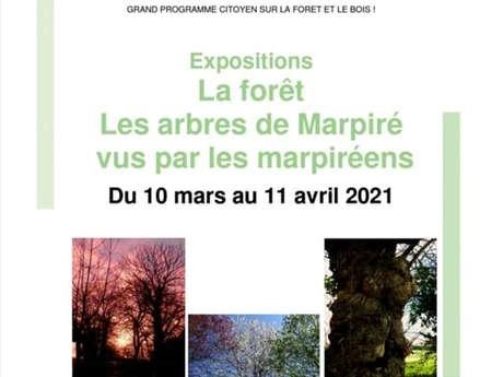 """Exposition: """"La forêt - les arbres de Marpiré vus par les marpiréens""""."""