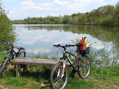 Vélo Promenade® n°2 : Entre Rives et Routes