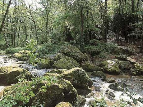 Les roches du Saut-Roland