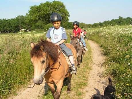 Ferme équestre les poneys de la Jouv'