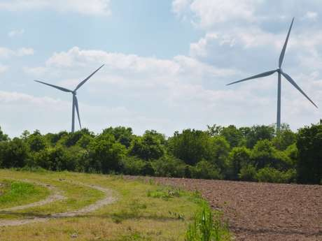 Bretagne Romantique : Circuit des éoliennes n° 8 --> 13