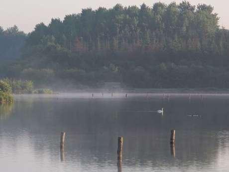 Circuit de l'étang de Careil n°116