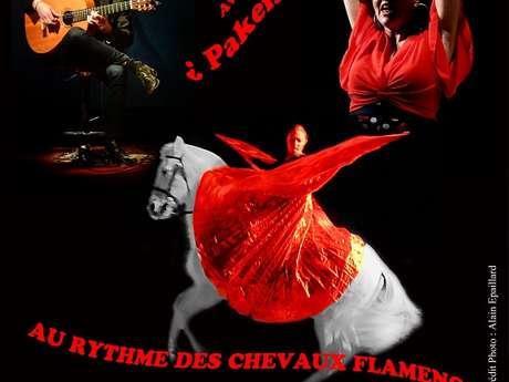 Peña Flamenco au Théâtre Equestre de Bretagne