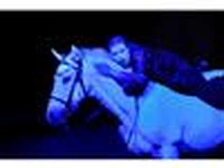 Basic Colors - Du Gospel à la Soul  au Théâtre Equestre de Bretagne