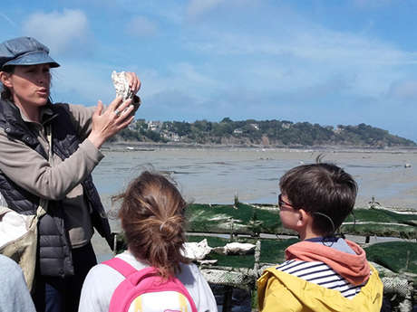 Sortie nature : Au cœur des parcs à huîtres